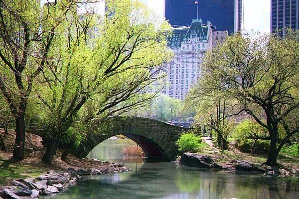 Getting New York City Film Permits to Shoot Your Movie in Central Park